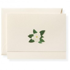 Boxed Note Cards, South Note, Karen Adams