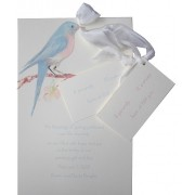 Baby Shower Invitations, Blue Bird, Odd Balls