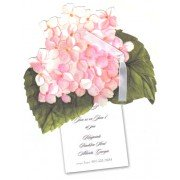 Floral Invitations, Pink Hydrangea, Stevie Streck