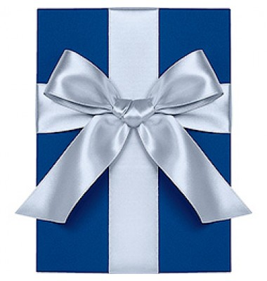Double Face Satin Ribbon, Bluebell, Waste Not Paper