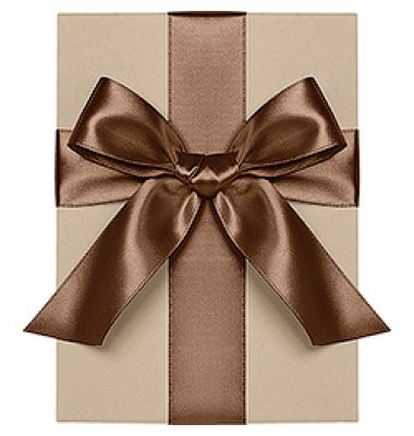 Double Face Satin Ribbon, Brown, Waste Not Paper