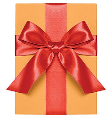 Double Face Satin Ribbon, Persimmon, Waste Not Paper