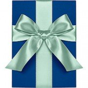 Double Face Satin Ribbon, Pool, Waste Not Paper