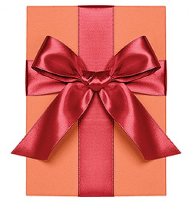 Double Face Satin Ribbon, Red, Waste Not Paper