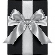 Double Face Satin Ribbon, Silver, Waste Not Paper